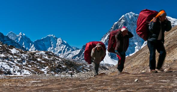 sherpa